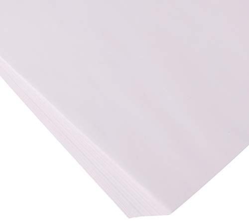 House of Doolittle Doodle Pad White Refill 25 Sheets 22 x 17 Inches (HOD402) (Of Refill Appointment Doolittle House Book)