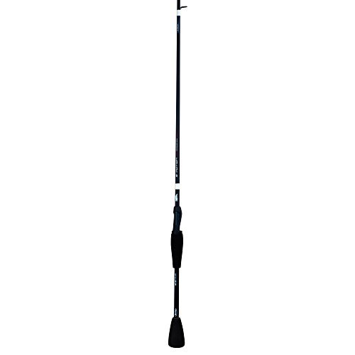 Berkley E-Motion Spinning Rod, 6 & 039;x 9 Medium by Berkley