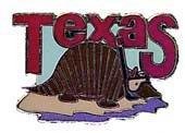 New Collectable Texas Scuba Diver Hat & Lapel Pin