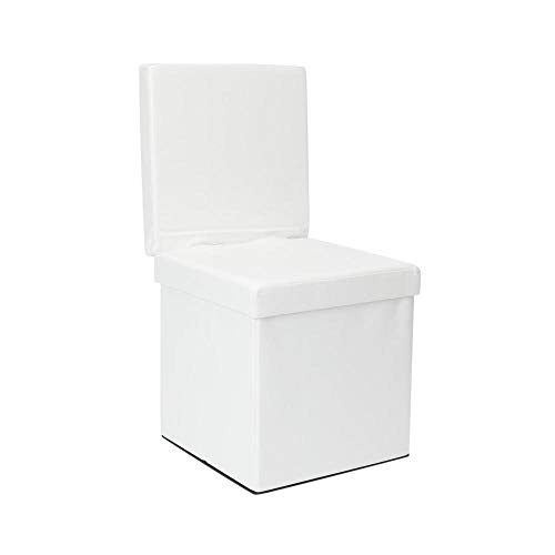 Dormify Collapsible Storage Ottoman Chair - Dorm Room Decor, White (Storage Chair)