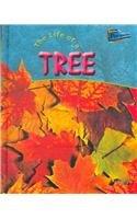 Life of a Tree (Life Cycles) pdf