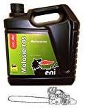 Aceite Eni - Agip Motosierras. Cadenas 5L. (40-50) (4)
