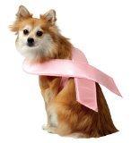 Rasta (Pink Ribbon Costumes)