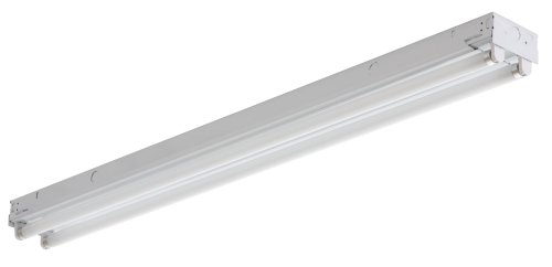 Lithonia Lighting C 232 120 GESB Two-Light T8 Fluorescent Ceiling Fixture, White