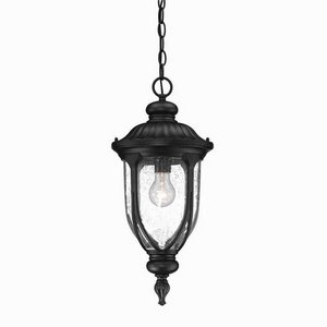 Acclaim 2216BK Laurens Collection 1-Light Outdoor Light Fixture Hanging Lantern, Matte Black by Acclaim