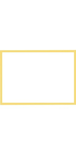 A1 Border Flat Card (3 1/2 x 4 7/8) - Gold Border - Pack of 50