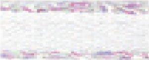 Berisfords Cinta de sat/én con Ribete Iridiscente 5 mm x 20/m Color Rosa