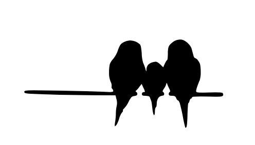 14 Bird - 7