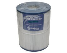 Flair Hot Numbers (Watkins Hot Spring Spa Limelight Flair Replacement Filter, 71827)