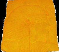 1 Qt. Honey Stain Concentrate, (Makes 5 quarts), to Color Concrete Walks, Patio, Steps (To Concrete Acid Steps Stain)