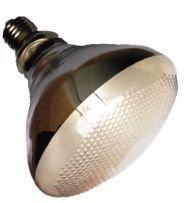 Mega-Ray Mercury Vapor Bulb - 70 Watts - Smallest UV Vapor Bulb On The Planet