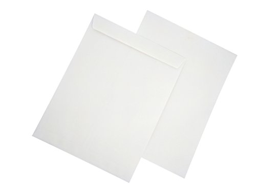 AmazonBasics Catalog Envelopes, Peel & Seal, 10 x 13 inch, White, 100-Pack by AmazonBasics