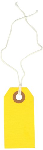 Orange Fluorescent Strung Tag (Aviditi G12012D Pre Strung Shipping Blank Tag, 13 Point Cardstock, 2-3/4