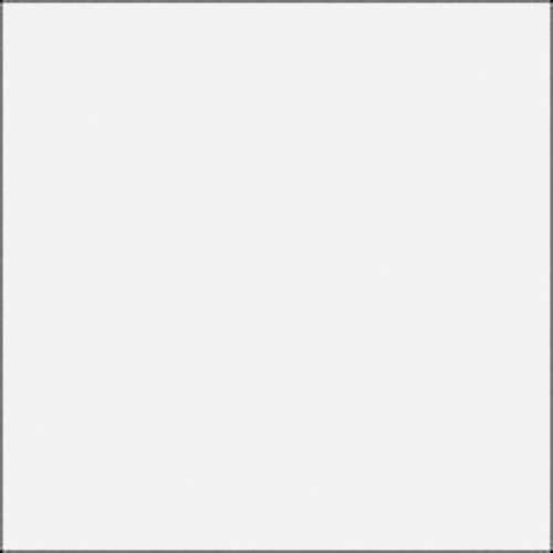 Rosco E-Colour #250 1/2 White Diffusion (21x24 Sheet)