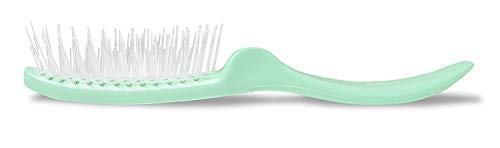 Stanley Home Products Essentials Style Glider Hairbrush - Detangles - Use on Wet or Dry Hair - Fresh Mint - Style Professional Hair Brush