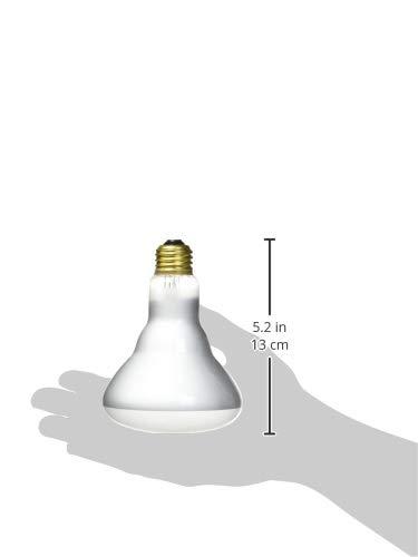 G E Lighting 28824 0 GE 65R30 FLD Light