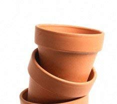 (New England Pottery Standard Terra Cotta Pot, 3.5