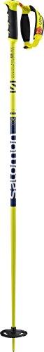 Salomon, Adult Unisex Ski Poles, 1 Pair, Big Mountain, 3.7 ft. Long,...