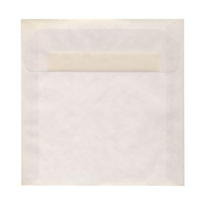 Clear Translucent Vellum 8 x 8 Envelopes ()