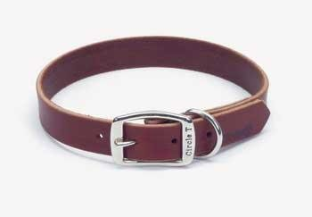 Coastal Pet Products Circle T Leather Town Dog Collar, 1