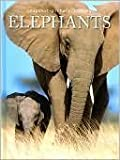 Elephants, Staff of Fog City Press, 1740899547