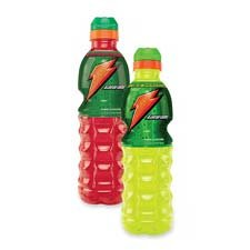 Quaker Foods : Gatorade, Fruit Punch, 24 oz, 24/CT -:- Sold as 2 Packs of - 24 - / - Total of 48 Each by Quaker