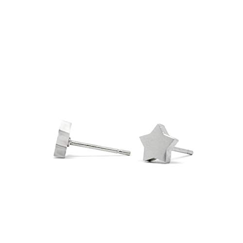 Tiny Stainless Steel Silver Star Stud Earrings for Girls Women (1/4 inch round)