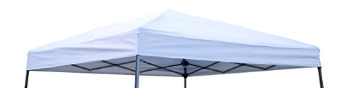 Trademark Innovations Square Replacement Canopy Gazebo Top 10' Slant Leg Canopy, 8 8',Silvery White - Canopy Top