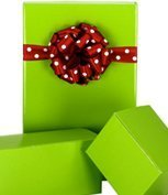 New Trendy Gloss Solid BRIGHT LIME Gift Wrap Wrapping Paper