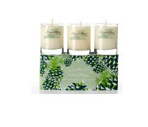 Roland Pine Pure Soy Candle Votive Gift Set