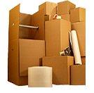 11 Box Wardrobe Moving kit #1