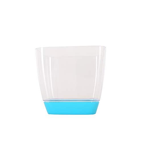 - Orchid Planter Square Pot Acrylic-Look Plastic Flowerpot (5.5 in, Blue Saucer - Transparent Blue Planter)