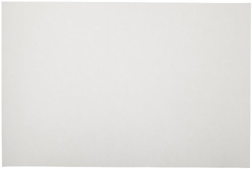 Sax Sulphite Drawing Paper, 80 lb, 12 x 18 Inches, Extra-White, Pack of 500-053946