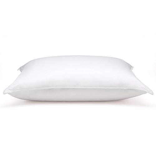 DOWNLITE Hypoallergenic Soft Down Pillow, 20-Inch-by-26-Inch