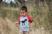 7 ate 9 Apparel Baby Boys Dinosaur Happy Easter Red Raglan 4T