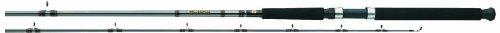 Daiwa WLDR 802MLR Downrigger Rod