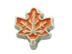 Cherityne Autumn Maple leaf Floating Charm for Locket (Autumn Island Pendant)