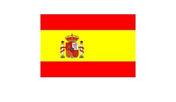 Bandera de España con funda para el asta, de 45 x 30 cm: Amazon.es: Hogar