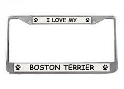 Boston Terrier License Plate Frame (Chrome) 5 Year Warranty