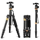 "Andoer DSLR Camera Tripod,52inch/132cm Aluminum Tripod Monopod with 360° Ball Head and 1/4"" Quick Release Plate for Canon Nikon Sony"