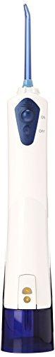 Waterpik Waterflosser Cordless Rechargeable WP-360W