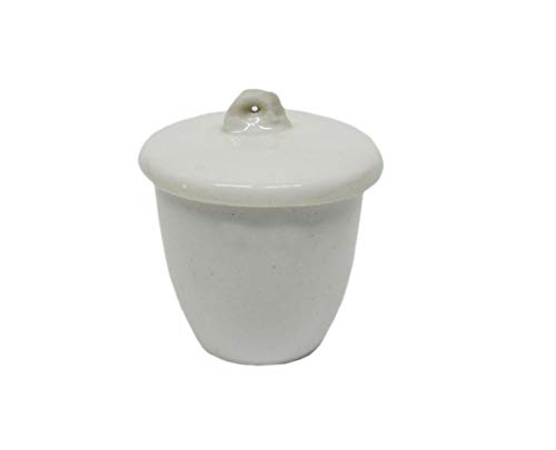 Otoolworld Porcelain Crucible with Lid Cover Lab Crucible (20ml, 30ml, 40ml, 70ml, 100ml, 200ml, 300ml) (30ml) ()
