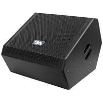 Powered 12 Inch Coaxial Floor Monitor