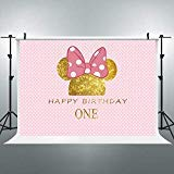 Riyidecor 1st Birthday Backdrop Mouse Polka Dots Pink Princess Girl Photography Background 7x5ft Newborn Decoration Celebration Props Party Photo Shoot Backdrop Blush Vinyl Cloth ()
