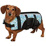 Guardian Gear ZM3036 10 52 Polka Dot Printed Pet Preserver, X-Small