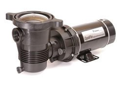 Pentair 347982 OptiFlo Horizontal Discharge Aboveground Pool Pump with Cord and Standard Plug, 1 HP by Pentair