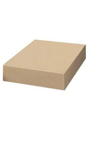 Count of 50 Apparel Boxes - Kraft - 86305 with 19'' x 12'' x 3''