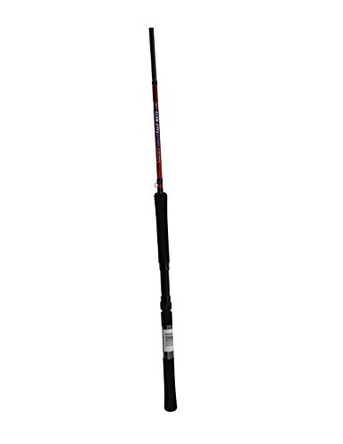 Jenko Slab City Graphite Rod, Multi, 14'