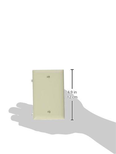 PASS & SEYMOUR TP13LACC30 1 Gang Blank Nylon Wall Plate, Almond
