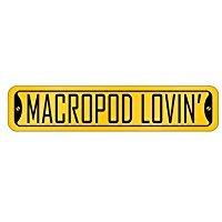 Macropod lovin` - Animals - Street Sign [ Decorative Crossing Sign Wall Plaque ] (Macropod Animals)